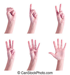 Hand gestures, counting to 5, over white background.