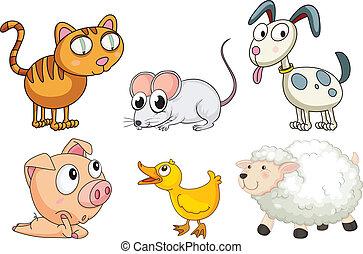 zes, anders, soorten, van, dieren