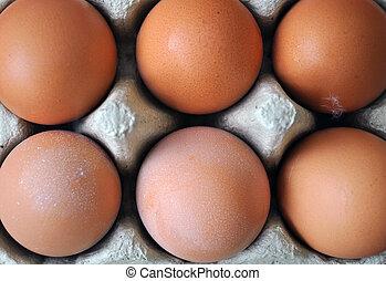 zes, bruine , eitjes