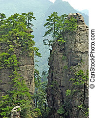 NATIONAL FOREST PARK - Zhangjiajie NATIONAL FOREST PARK IN...