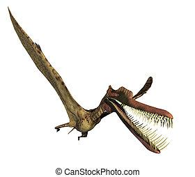 Zhenyuanopterus Dinosaur 2 - The zhenyuanopterus dinosaur...
