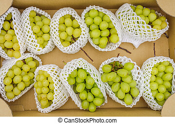 zieleń grape, grono