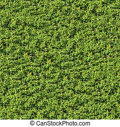 zieleń pokryta obficie liśćmi, texture., bush., seamless