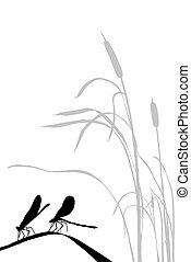 ziele, sylwetka, dwa, dragonflies