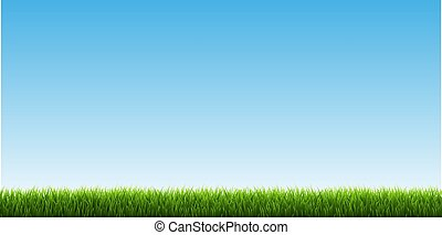 zielona trawa, brzeg, niebo
