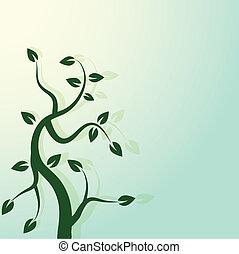 zielone drzewo, wiosna