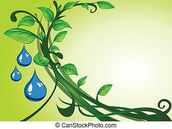 zielone listowie, z, krople, od, woda