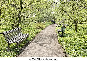 zielony, ścieżka, soczysty, ogrodowa ława