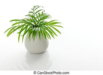 zielony, dłoń listowie, w, niejaki, biały, ceramiczny, wazon