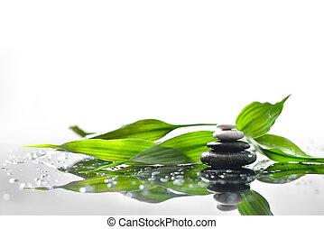 zielony, gałązka, tło, zdrój, kamienie, bambus
