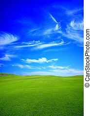 zielony, golf