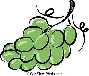 zielony, ilustracja, winogrona, biały, wektor, tło.