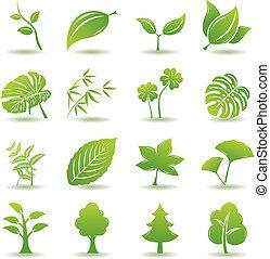 zielony, komplet, liść, ikony