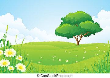 zielony krajobraz, z, drzewo