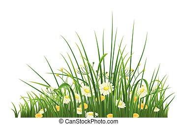zielony, kwiaty, trawa