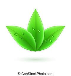 zielony, leaves.