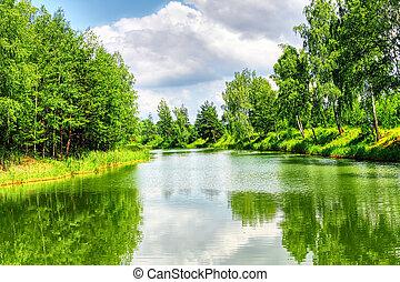 zielony, natura krajobraz