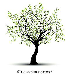 zielony, wektor, drzewo, białe tło