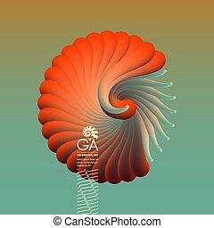 zijn, gebruikt, marketing, nautilus., seashell, flyer., voorwerp, glad, vorm., illustratie, presentatie, vector, groenteblik, reclame, kaart, 3d