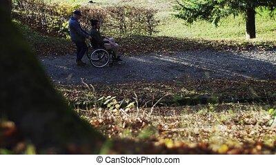 zijn, het spreken., natuur, wheelchair, vader, zoon, senior,...