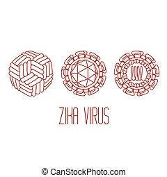 zika, ウイルス, 構造