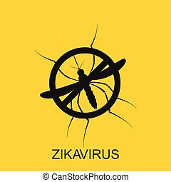 Zika mosquito vector. Virus alert. Aedes Aegypti isolated on...