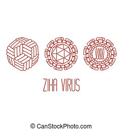 Zika virus structure