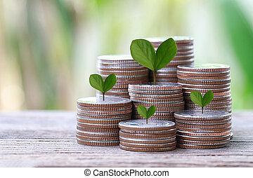zilver, munt, van, grafiek, vorm, en, groen boom, bovenzijde, om te, grown, in, concept, van, zakelijk, investering, profits.