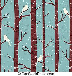 zima, bříza, les