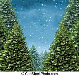 zima drzewo, tło