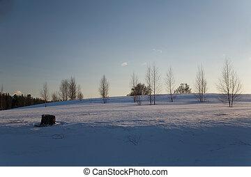 zima, dzień