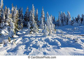zima, góry
