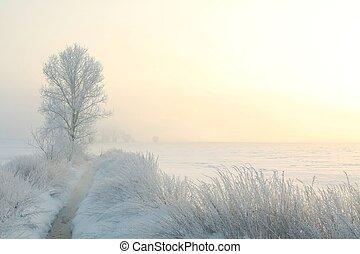 zima krajobraz, na, świt