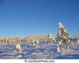 zima krajobraz