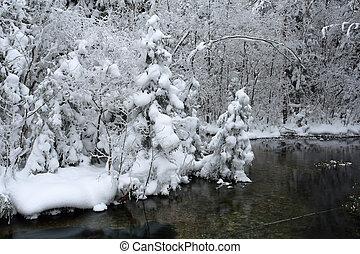 zima, krajobraz, w, mroźny, dzień
