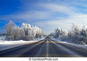 zima krajobraz, z, przedimek określony przed rzeczownikami, droga, przedimek określony przed rzeczownikami, las