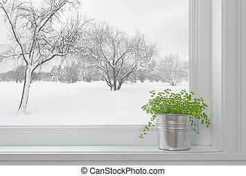 zima krajobraz, zobaczony, przez, przedimek określony przed rzeczownikami, okno, i, zielona roślina