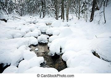 zima, las, rzeka, pod, przedimek określony przed rzeczownikami, śnieg