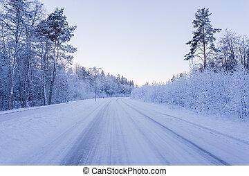 zima, las, z, droga, pokryty, z, śnieg