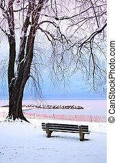 zima, park