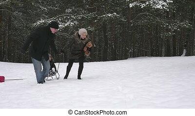 zima, park, sanie, ich, wyścigi, rodzice, dziecko, 96fps