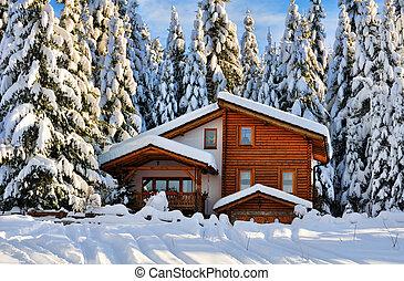zima, piękny, śnieg, dom, w, las