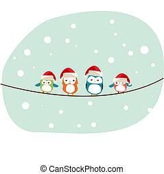 zima, ptáci, vánoce karta