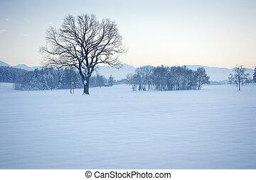 zima, scenérie