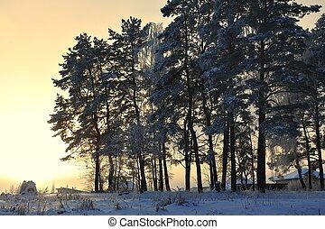 zima sceniczna
