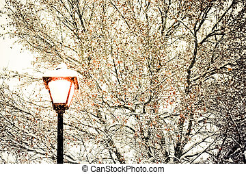zima, uliczne światło