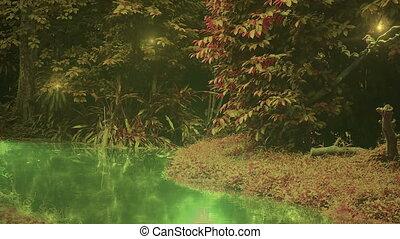 zimorodek, w, oczarowany, las