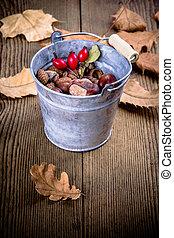 Zinc bucket full of acorn, chestnut and rosehip