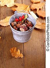 Zinc bucket full of chestnut, acorn and rosehip