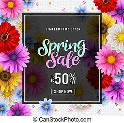 zinnia, colorido, primavera, venta, crisantemo, vector,...